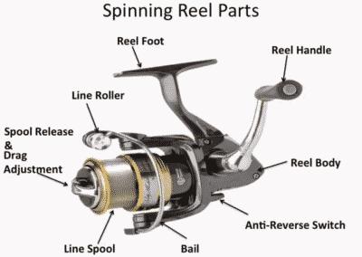 Trolling Reel Diagram Auto Electrical Wiring Diagram